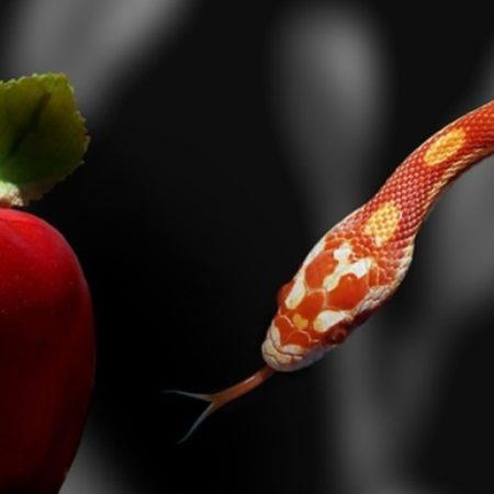 26-serpente_pecado-b
